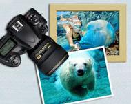 Печать дизайнерских фото